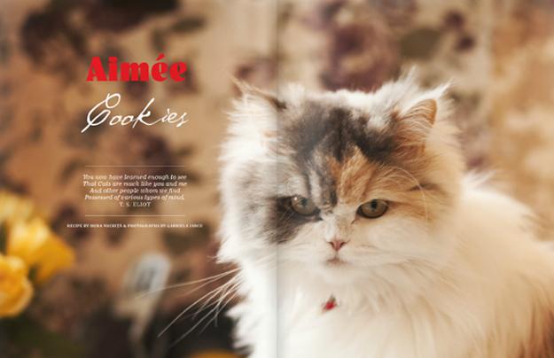 What Liberty Ate magazine